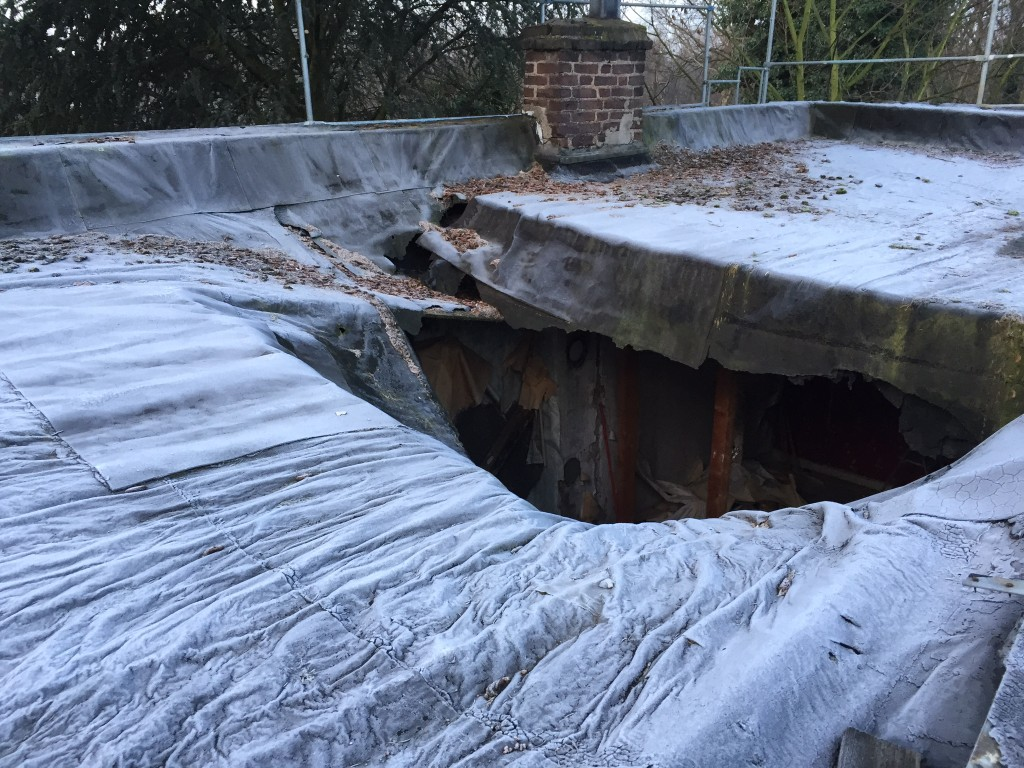 Unser altes Dach - frozen!